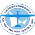 Szsports association icon 20160711155648619
