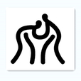 Szsports association icon 20160722111308860